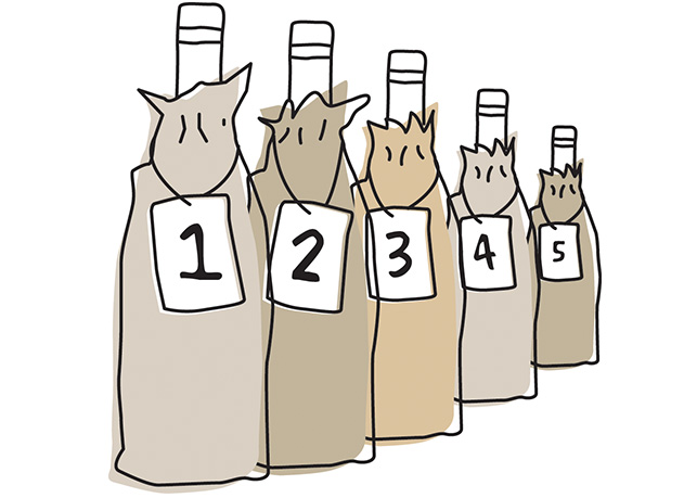 Illustration of a row of wine bottles